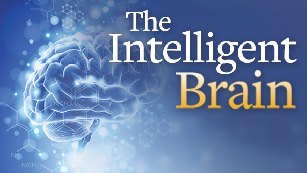 The Intelligent Brain