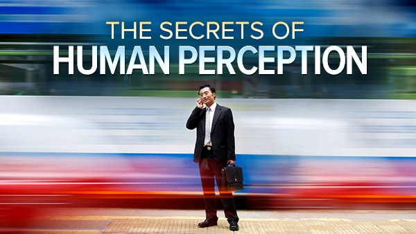 Understanding the Secrets of Human Perception