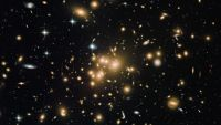 Galaxies and Clusters