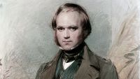 Reconciling Darwin and Mendel