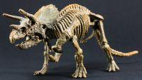 Paleontologists as Detectives