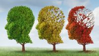 The Aging Mind: What Changes?