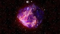 The Corpses of Massive Stars