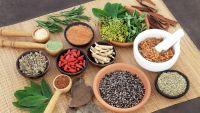 Herbalism and Herbal Medicines
