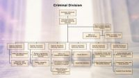 Anatomy of a Federal White Collar Case