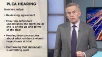Plea Bargains and Immunity Deals