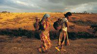 Sub-Saharan African Cultures