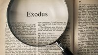 The Exodus-Did It Happen?