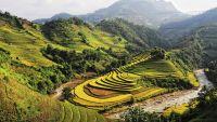 Southeast Asia-Vietnam