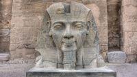 Ramesses II: Heartbeat of History