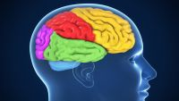"""Are Emotions """"in"""" the Mind?"""