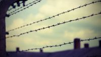 Theological Responses to the Nazi Holocaust