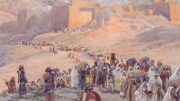 The Rise and Fall of Judah