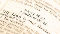 Interlude-Some Wisdom Psalms