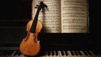 The Solo Concerto