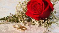Haydn's Marriage and Esterhaza
