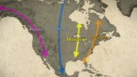 Orientation, Navigation, Migration: Bird Road Trips