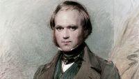 Darwin and Natural Selection