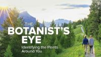 The Botanist's Eye: Identifying the Plants around You