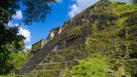 Discovering the Maya