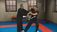 Kung Fu: Longer Range with Praying Mantis