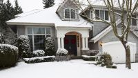 Fall and Winter Care of Trees and Shrubs