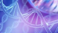 Evolution and Molecular Biology