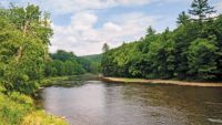 The Pennsylvania Wilds: Wilderness Reborn