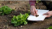 Gardening CSI: Case Studies