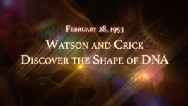 February 28, 1953: Watson and Crick Discover the Shape of DNA