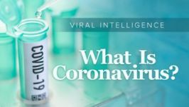 Viral Intelligence: What Is Coronavirus?